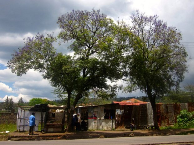 Roadside stalls on the Bahati Road in Nakuru, Kenya.